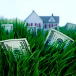 money in the grass